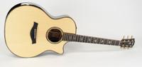 Taylor 914ce Acoustic-Electric Guitar - ES2, Case