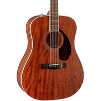Fender PM-1 Dreadnought all mahogany NE Nat