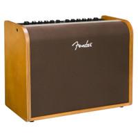 Fender Acoustic 100 Combo Amplifier