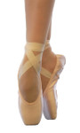Variable Pointe(Now available)