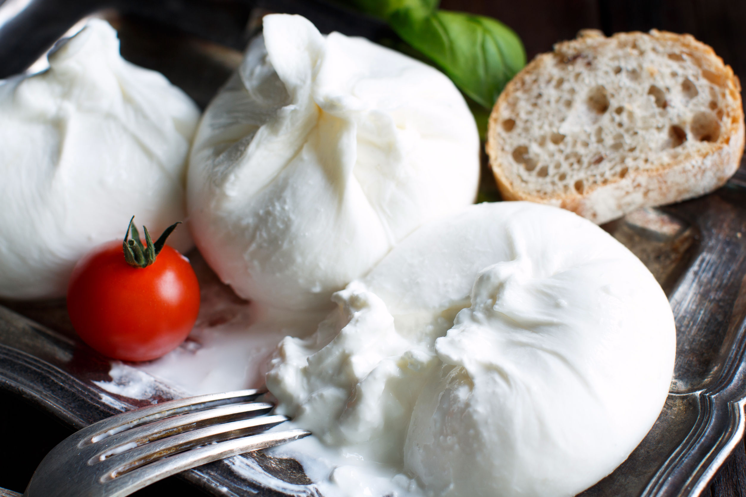 Fresh Mozzarella Using Citric Acid Recipe The Cheesemaker