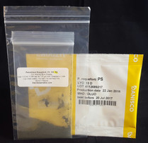 Penicillium Roqueforti PS Strain 2.5 dose