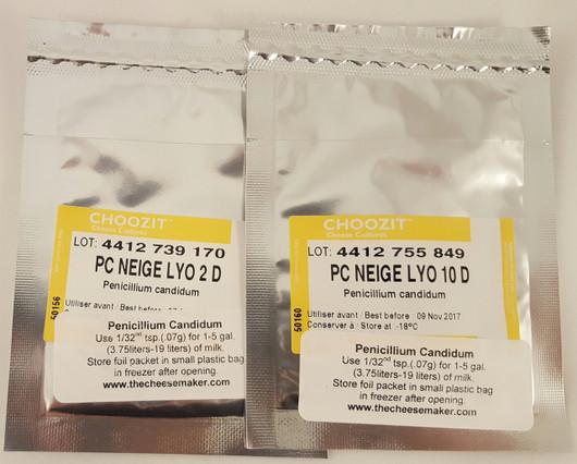 Penicillium Candidum - Neige 2 dose 5 Packets Wholesale