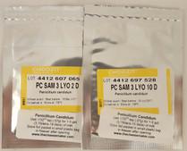 Penicillium Candidum - Sam 3 10 dose 5 Packets Wholesale