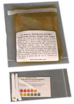 Kombucha (SCOBY)Mother Culture 10 Units Wholesale