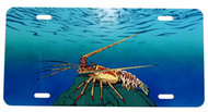 Spiny Lobster License Plate