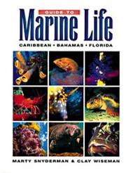 Guide to Marine Life: Caribbean, Bahamas, Florida