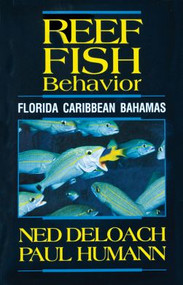 Reef Fish Behavior - Florida Caribbean Bahamas