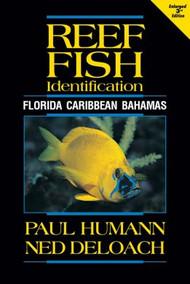 Reef Fish ID - Florida Caribbean Bahamas