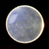 Zeagle Hydrostatic Diaphragm - Flatheads