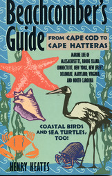 Beachcomber's Guide - Cape Cod to Cape Hatteras - Softcover