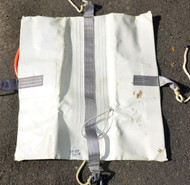 Used - Like New Carter 100lb Pillow Commercial Lift Bag