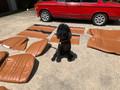 Dtech Ultimate Upholstrey kit (seats, door panels) Cork Tobaco color