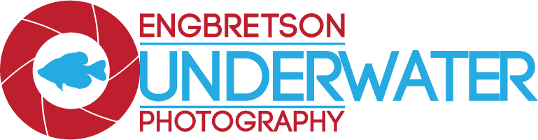 engbretson-underwater-photography-cropped-balc-image-small.png