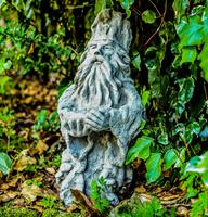 Tree wizard garden statues