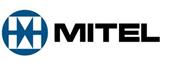 mitelcat.png