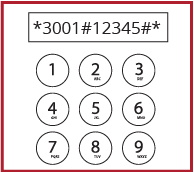 Dial and call *3001#12345#*