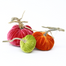 "The NEW Sorbet Trio of 3 velvet pumpkins includes a 6"" Guava, 5"" Persimmon, and 4"" Chartreuse."