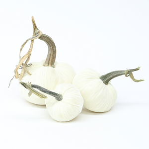 """The NEW Snow Trio of 3 velvet pumpkins includes a 6"""" Ivory, 5"""" Ivory, and 4"""" Ivory."""