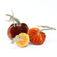 Velvet Pumpkin Trio - Fall Sunset