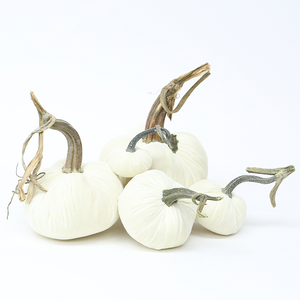 "The NEW Snow Large Set of 5 velvet pumpkins includes a 8"" Ivory, 6"" Ivory, 5"" Ivory, 4"" Ivory, and 3"" Ivory."