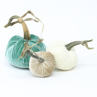 "The NEW LoveFeast Trio of 3 velvet pumpkins includes a 6"" Lagoon, 5"" Bone, and 4"" Ivory."