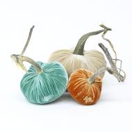 "The NEW Cozy Trio of 3 velvet pumpkins includes a 6"" Bone, 5"" Lagoon, 4"" Spice."