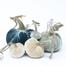 "The NEW Coastal Large Set of 5 velvet pumpkins includes a 8"" Wedgewood, 6"" Spa, 5"" Bone, 4"" Bone, and 3"" Spa."