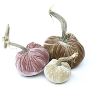 "The champagne Trio includes a 6""  Mocha, 5"" Champagne and a 4"" Bone velvet pumpkin with Swarovski Crystals"