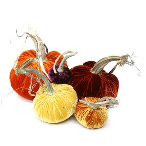 "8"" Persimmon velvet pumpkin, 6"" Fire velvet pumpkin, 5"" Maize velvet pumpkin with crystals, 4"" D'or velvet pumpkin with crystals and 3"" Eggplant velvet pumpkin with crystals."