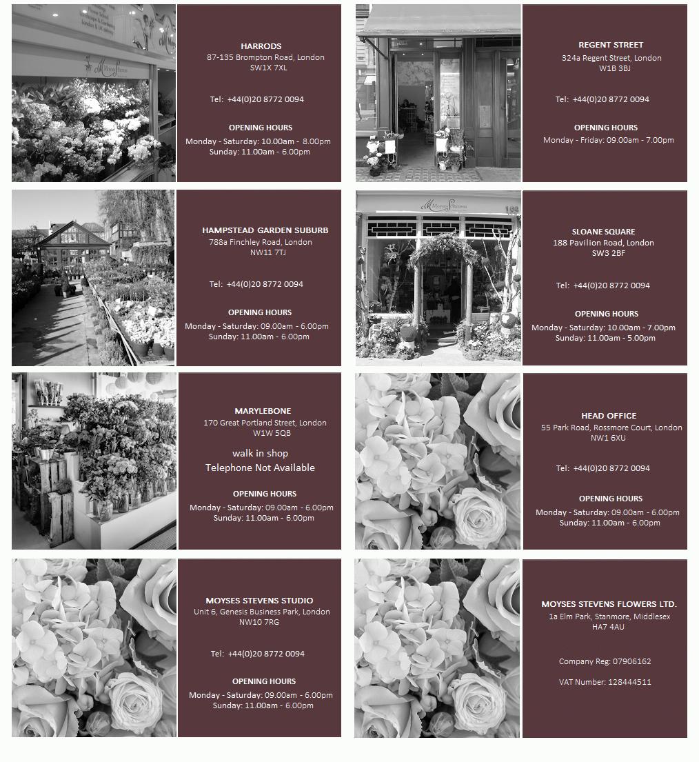 london-moyses-stevens-flowers-shops.png