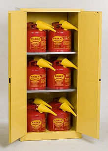 60 Gallon Flammable Liquid Safety Cabinet, 12 piece 5 Gallon Can Combo Eagle 1962CS12