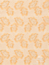 Lace H722 Creme/Light Gold