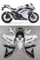 Fairings Plastics Kawasaki Ninja 300R EX300R White Ninja Racing (2013-2014-2015)