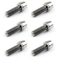 M5x16mm TITANIUM Bolts Allex Hex Bike Stem Tapered Head Screw + Washer 6pcs, Titanium