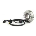 Engine Stator Coil For Suzuki AN250 Burgman250 (03-06) AN400 Burgman400 (03-11)