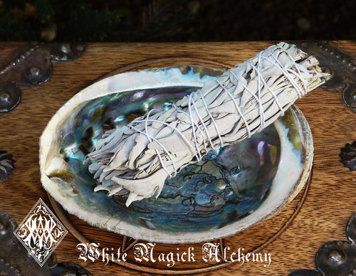 *White Sage Wand and Abalone Shell Sacred Smudge Set