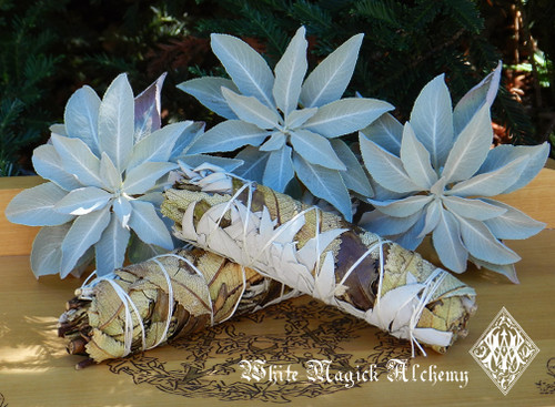 "Yerba Santa and White Sage Smudge Wands 6"" Clearing, Spiritual Cleansing, Banishing, Protection"