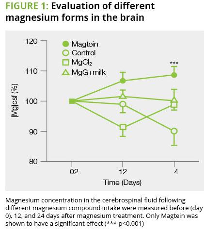 Magtein Magnesium L-Threonate Study
