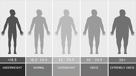 Body Mass Index Chart