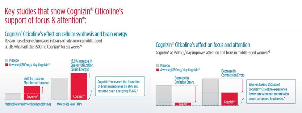 Cognizin Citicoline Infographic #1
