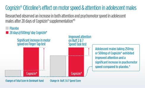 cognizin-infographic-3.jpg
