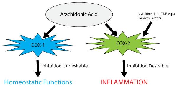 COX Diagram