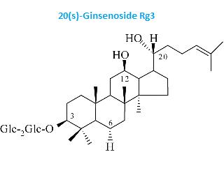 Panax Ginseng Ginsenosides