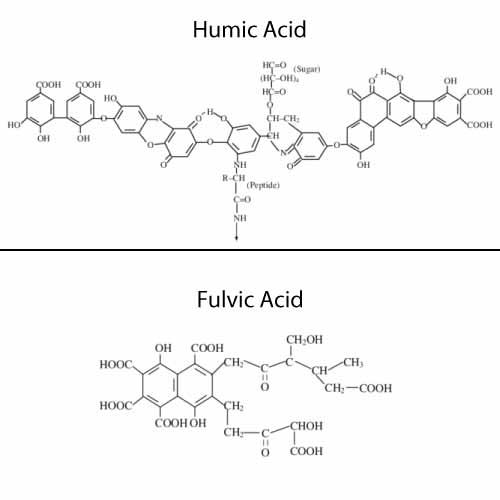 Humic Acid and Fulvic Acid Structure