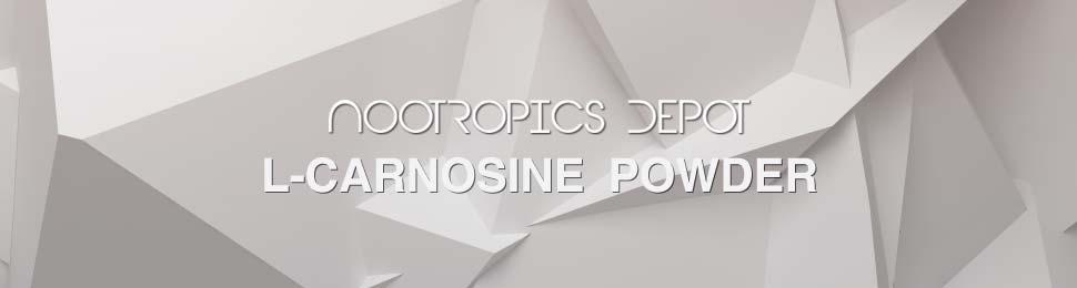 Buy L-Carnosine Powder