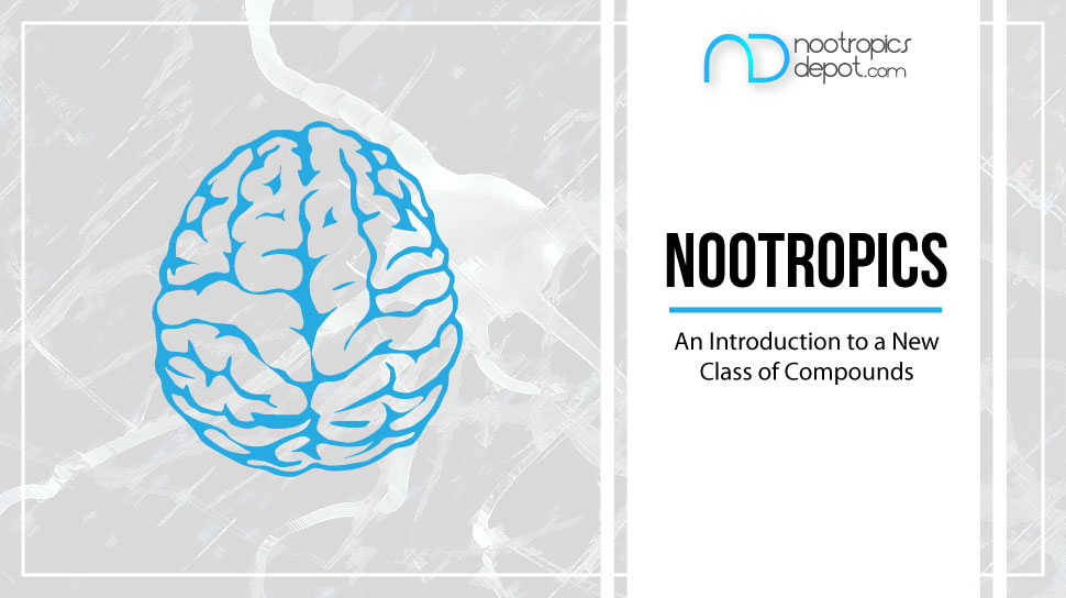 Ultimate Guide to Nootropics Blog