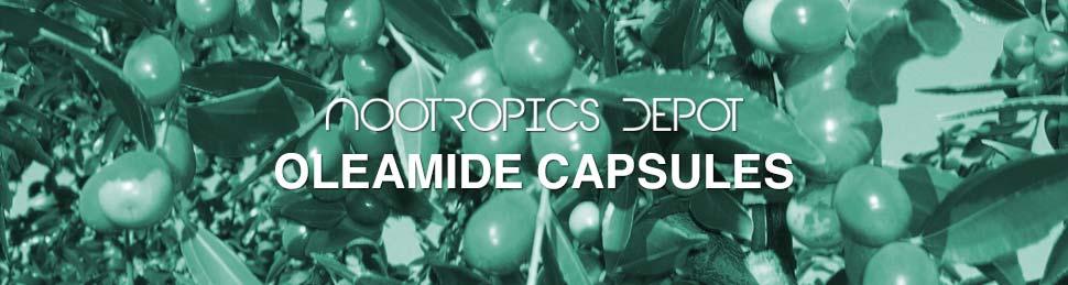 Buy Oleamide Capsules