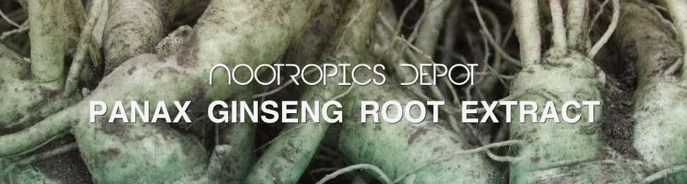 Panax Ginseng Root