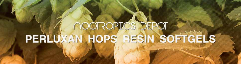 Buy Perluxan Hops Resin